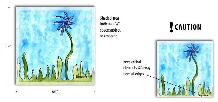 Image Guidelines - illustration